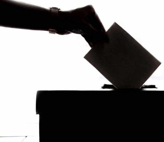 Elezioni FEP.